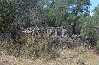 Ruin  for sale - OZIAS PAXOS