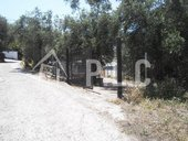 For sale LAND 70.000,00€ GIANNAS (code Π-173)