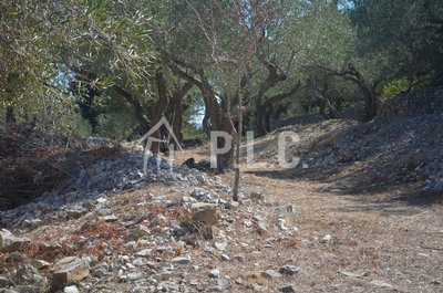 PLOT WITH PERMISION &SWIMMING POOL for sale - lioniskari ozias OZIAS PAXOS