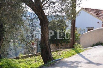 For sale LAND 90.000,00€ DENDIATIKA LOGGOS (code Π-307)
