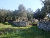 PLOT  WITH PROPERTIES for sale - PALIOMILOS PAXOS
